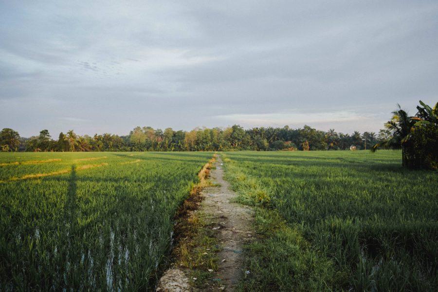 開業前にまずは田舎で暮らしてサロンワークを経験しよう】